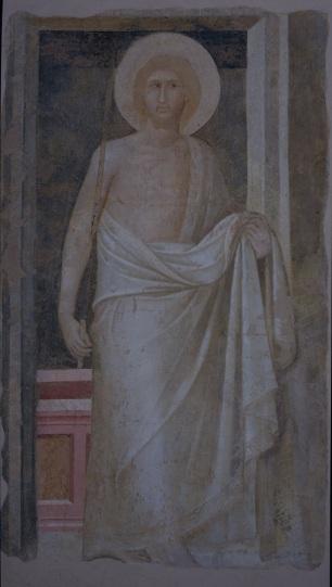 Figg.12- 21 . Ambrogio Lorenzetti, Maestà e Storie di San Galgano, affreschi strappati, dalla chiesa di San Galgano a Montesiepi (Chiusdino) PARTICOLARI DOPO IL RESTAURO